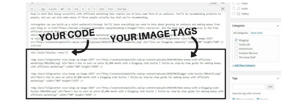 How to hide pins images in your blog post (easy step-by-step guide)