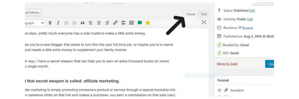 Hide pins in your blog posts (visual text)