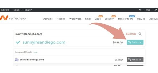 screenshot of a domain name purchase
